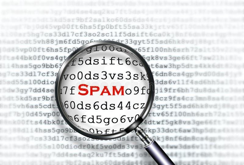 Explorador del Spam fotos de archivo libres de regalías