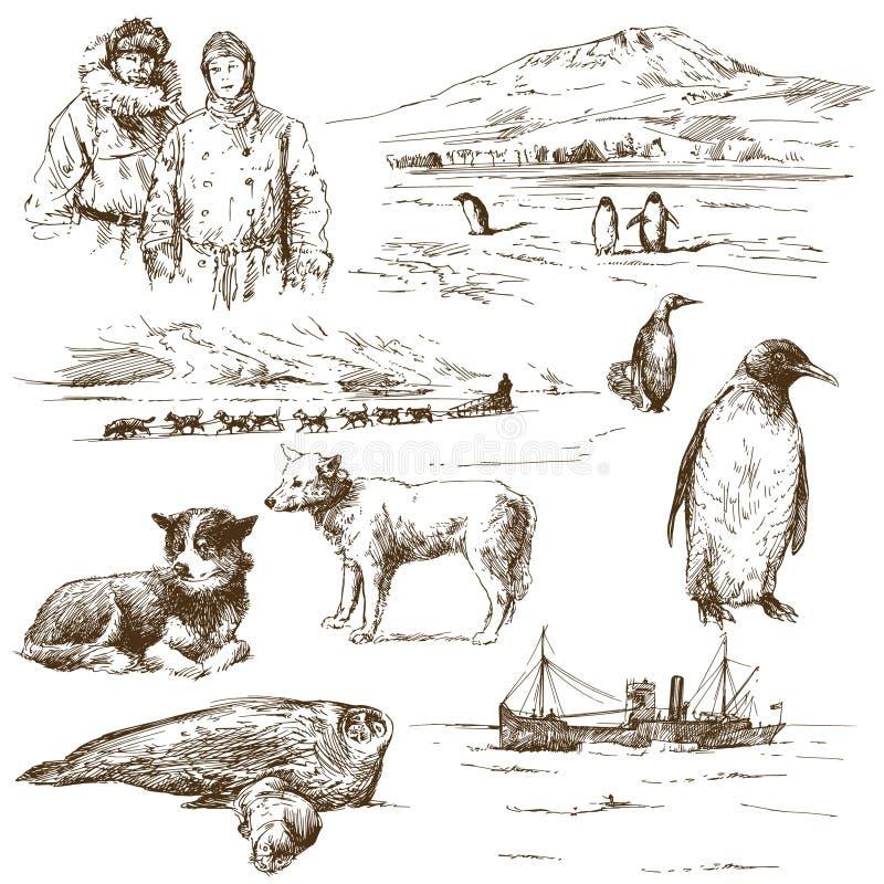 Explorador polar ilustração stock