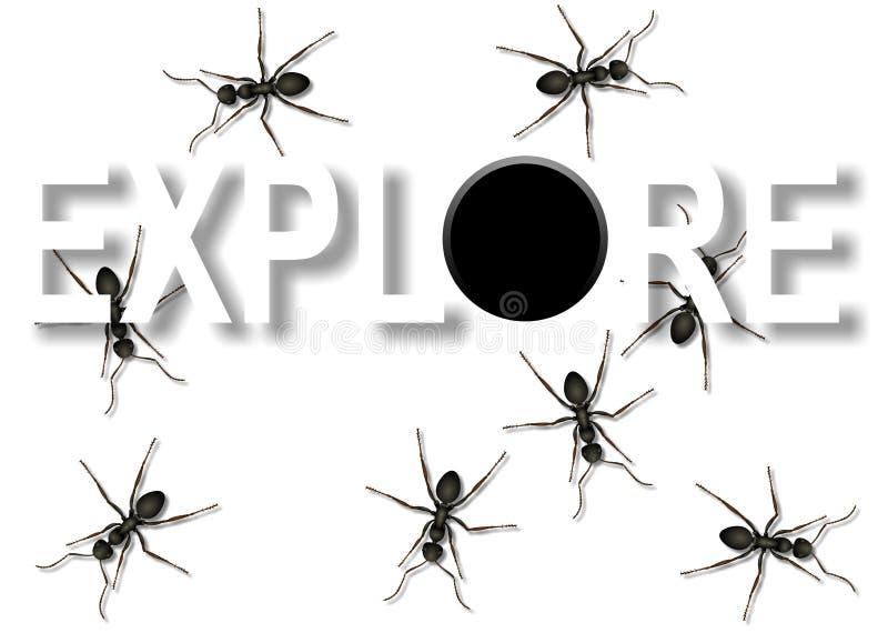 Explore ilustração do vetor