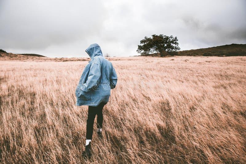 Explorez les champs photographie stock