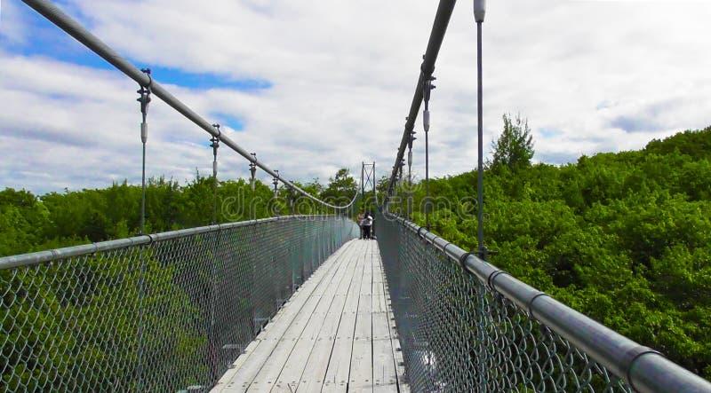 Suspension Footbridge at Blue Mountains stock image