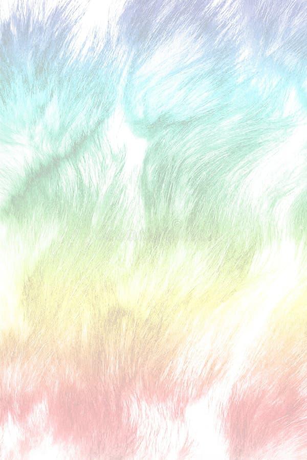 Explosão do pó colorido no fundo branco, movimento do gelo pó de explosão/de jogo do pó da cor da cor, glitt colorido foto de stock
