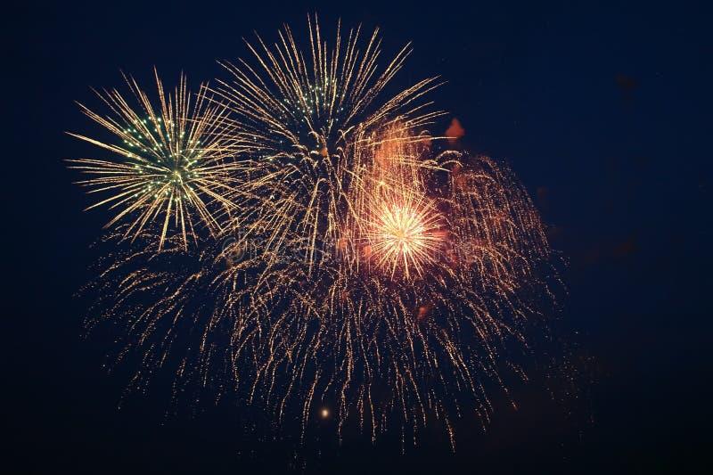 Explosões dos fogos de artifício contra o céu noturno fotografia de stock