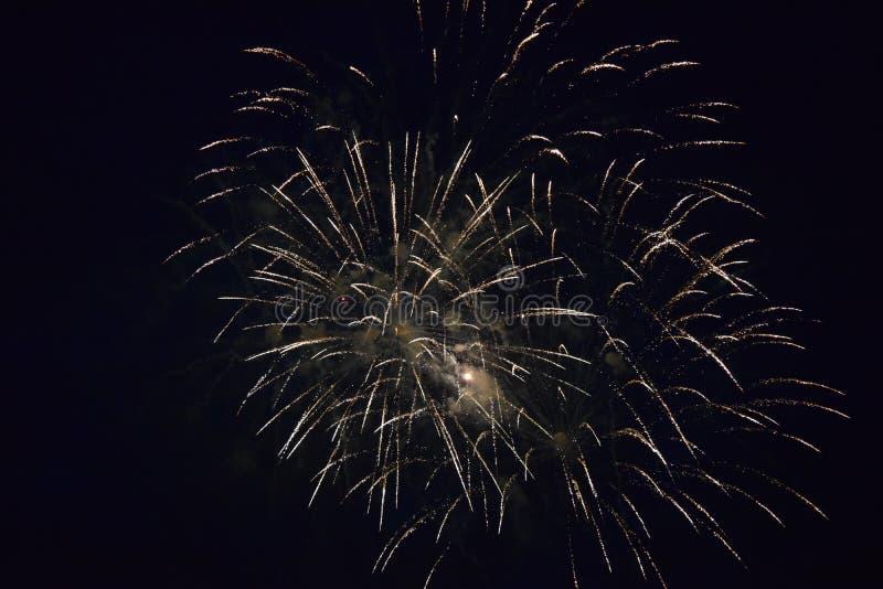 Explosões dos fogos-de-artifício no céu noturno fotos de stock
