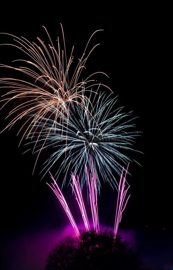 Download Explosões Dos Fogos-de-artifício No Céu Preto Imagem de Stock - Imagem de estrela, explosões: 16851767