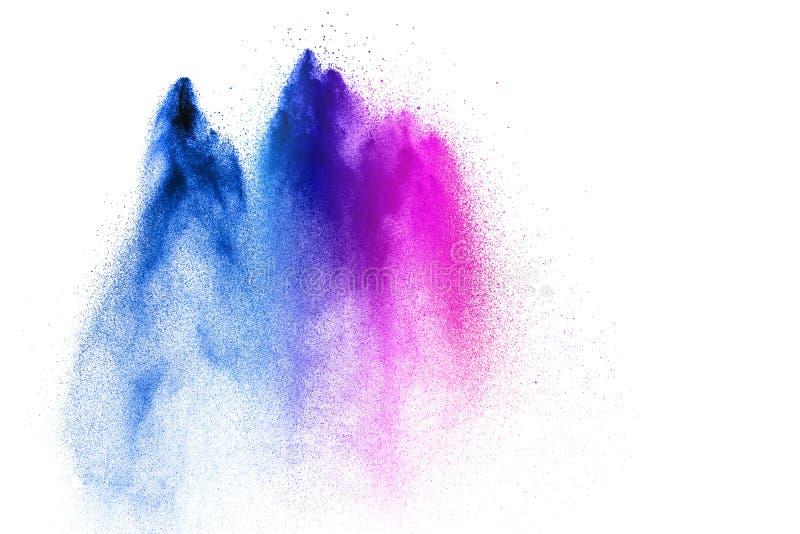 Explosión azul rosada del polvo en el fondo blanco Chapoteo azul rosado del polvo foto de archivo