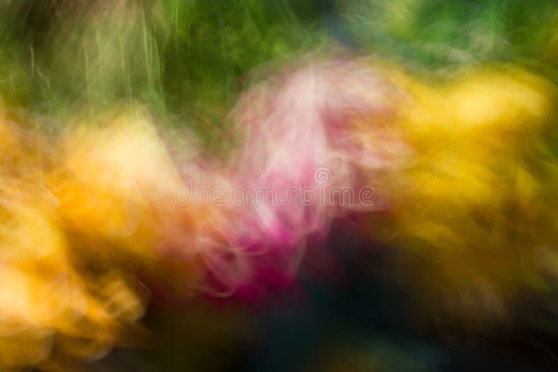Explosión de color doble. fotos de archivo libres de regalías