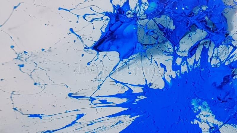 explosión de la pintura azul en el fondo blanco foto de archivo
