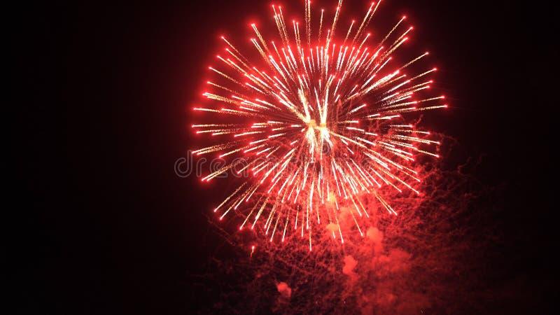 Explosión roja hermosa de los fuegos artificiales en el cielo nocturno imagen de archivo