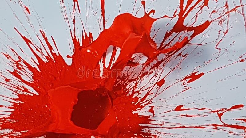 Explosie van rode verf op witte achtergrond royalty-vrije stock afbeeldingen