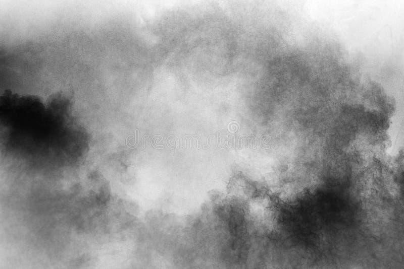 Explosion de poudre noire sur le fond blanc Les particules de poussière noires abstraites éclaboussent sur le fond blanc photos libres de droits