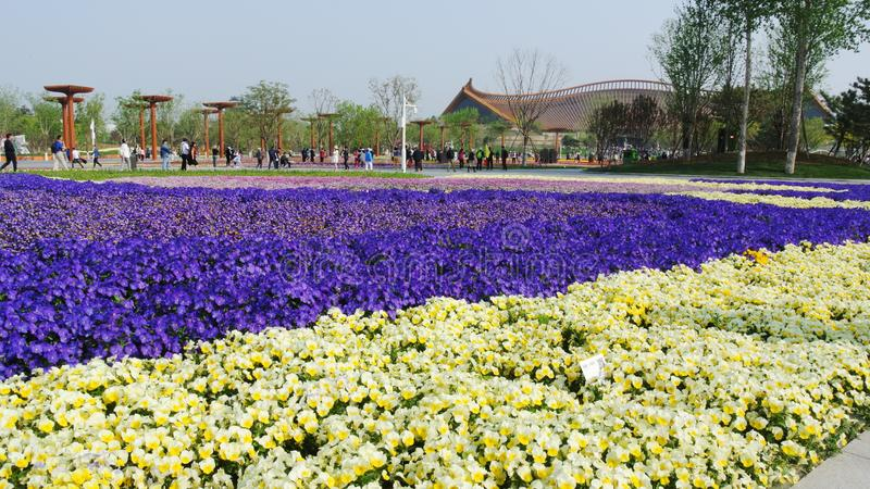 EXPO 2019, κινεζικός κλασσικός κήπος, κινεζικές αρχιτεκτονικές, κινεζικός πολιτισμός, διεθνής φυτοκομική έκθεση του Πεκίνου του 2 στοκ εικόνα με δικαίωμα ελεύθερης χρήσης