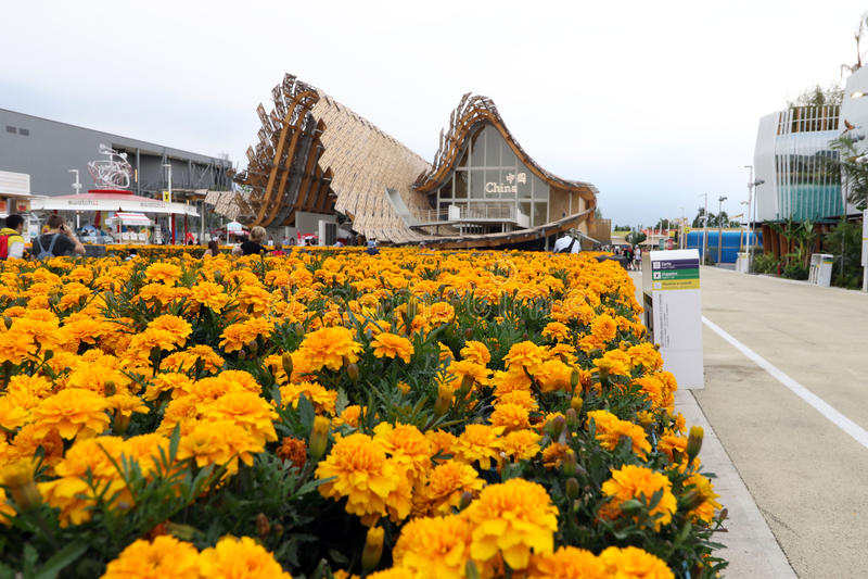 Expo2015米兰,米兰 免版税库存照片