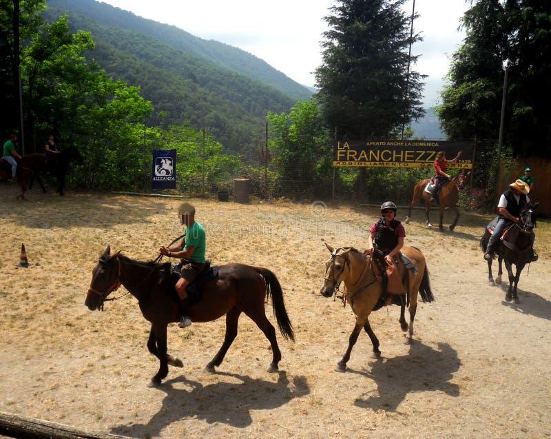 Expo de chevaux dans Traso, Gênes images libres de droits