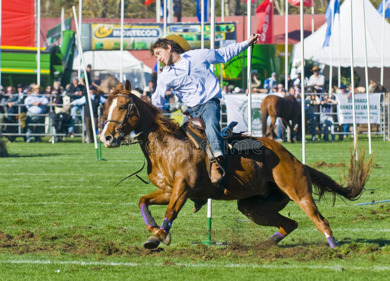 Expo Prado fotos de stock royalty free