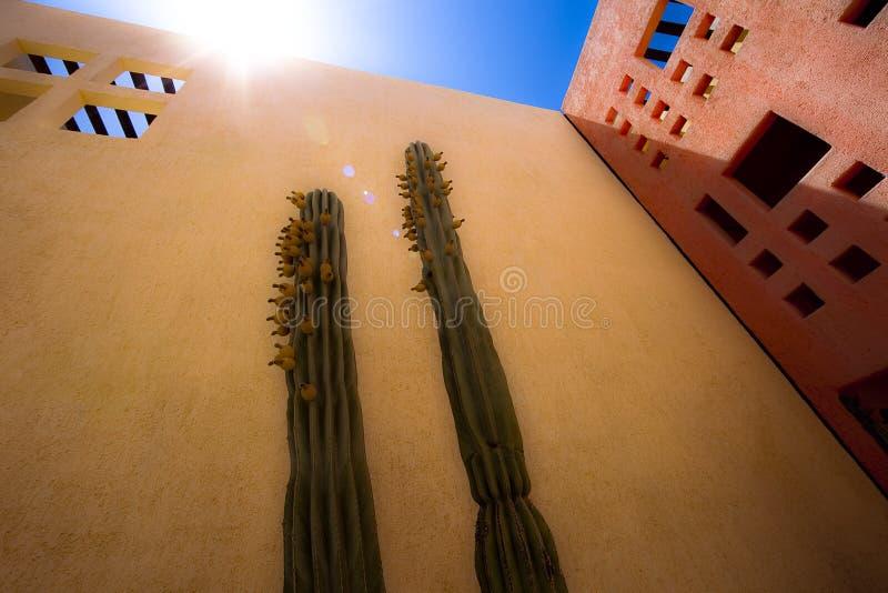 Exponering av den mexicanska solen royaltyfria bilder
