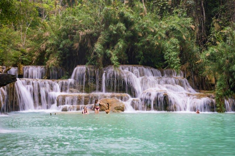 exponering long h?rligt landskap Vattenfall i l?s djungel Asiatisk natur arkivfoton