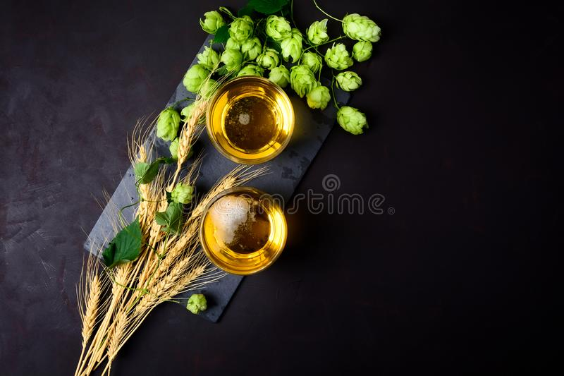 Exponeringsglas av öl med gröna flygturer och veteöron på mörk träbakgrund 1 livstid fortfarande Top beskådar kopiera avstånd royaltyfri bild