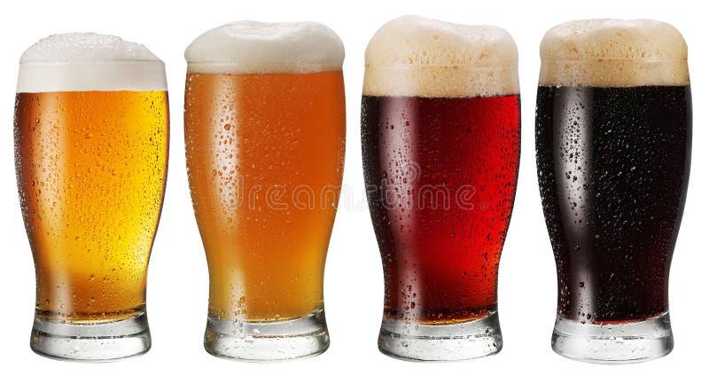 Exponeringsglas av öl på vit bakgrund royaltyfria foton