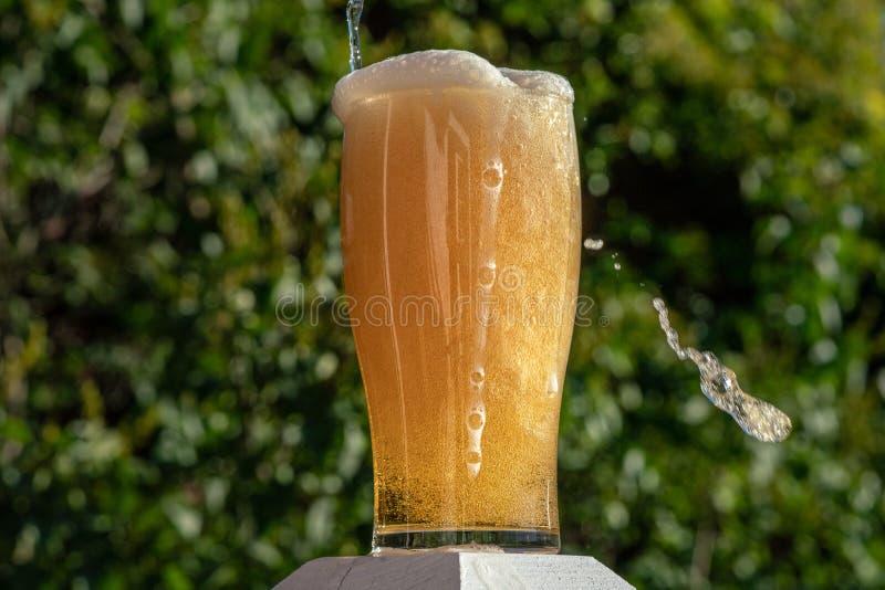 Exponeringsglas av öl som överfylls med skum och bubblor flödande dow arkivbild