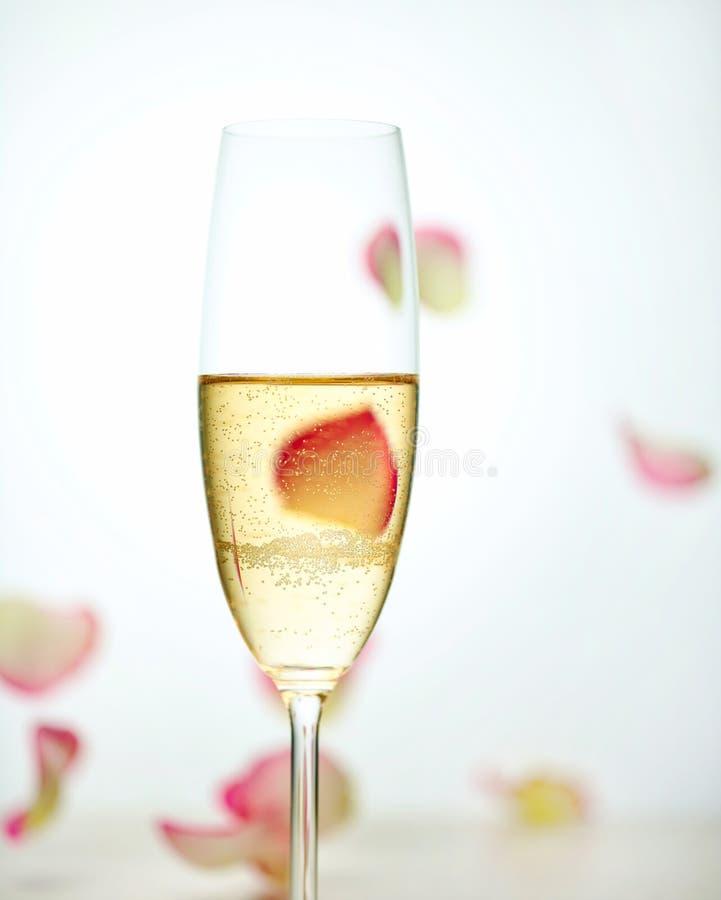 Exponeringsglas av champagne och fallande rosa kronblad arkivbilder