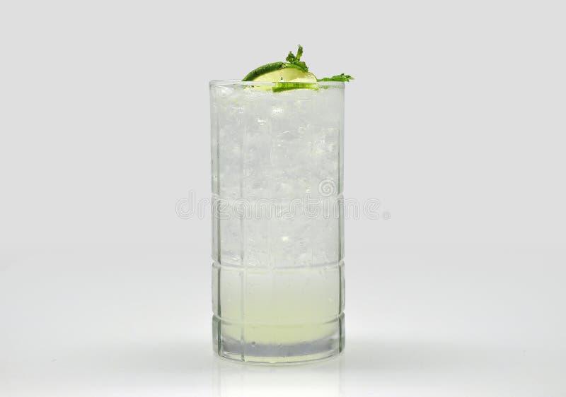 Exponeringsglas av citronjuice med mintkaramellen och is royaltyfri bild