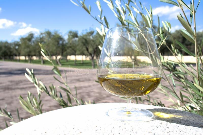 Exponeringsglas av extra jungfrulig olivolja royaltyfria foton