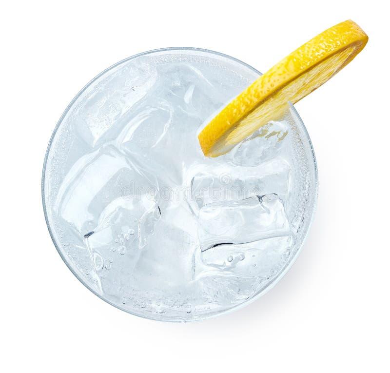 Exponeringsglas av gin och uppiggningsmedel arkivfoto
