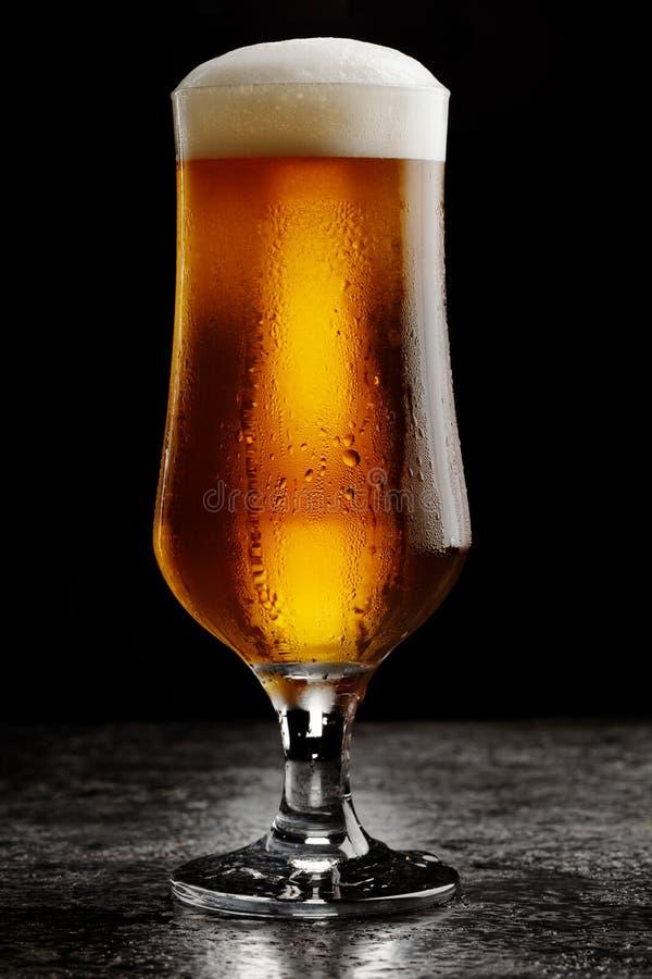 Exponeringsglas av ljust öl för kallt hantverk på mörk bakgrund arkivfoto