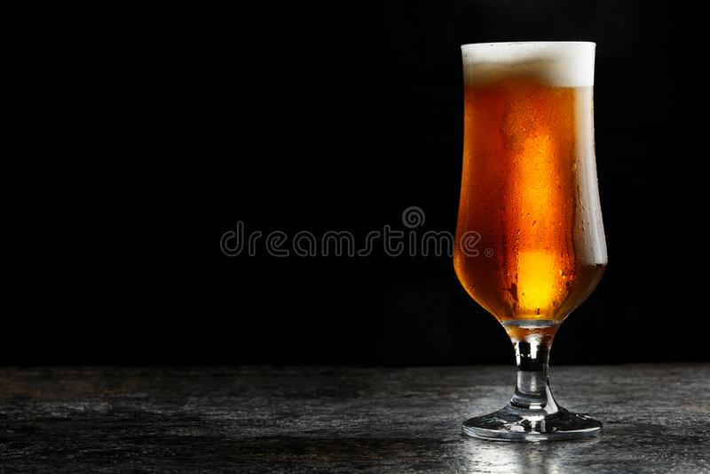 Exponeringsglas av ljust öl för kallt hantverk på mörk bakgrund royaltyfria bilder
