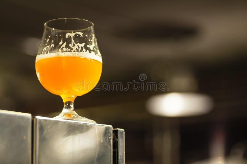 Exponeringsglas av ljust öl i ett bryggeri royaltyfria foton