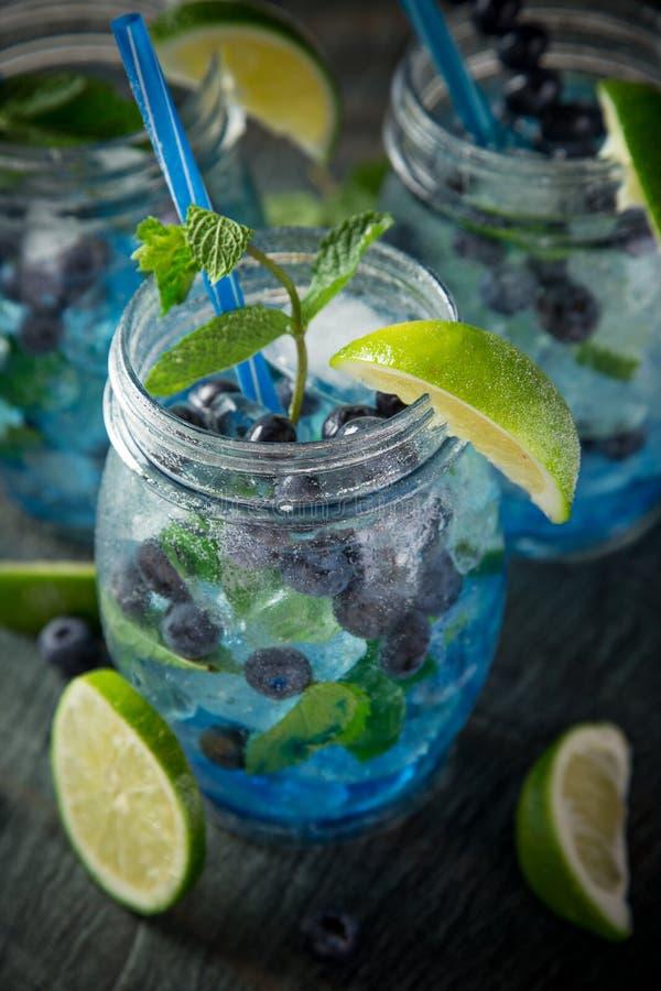 Exponeringsglas av ny hemlagad ny blåbärfruktsaft royaltyfria foton