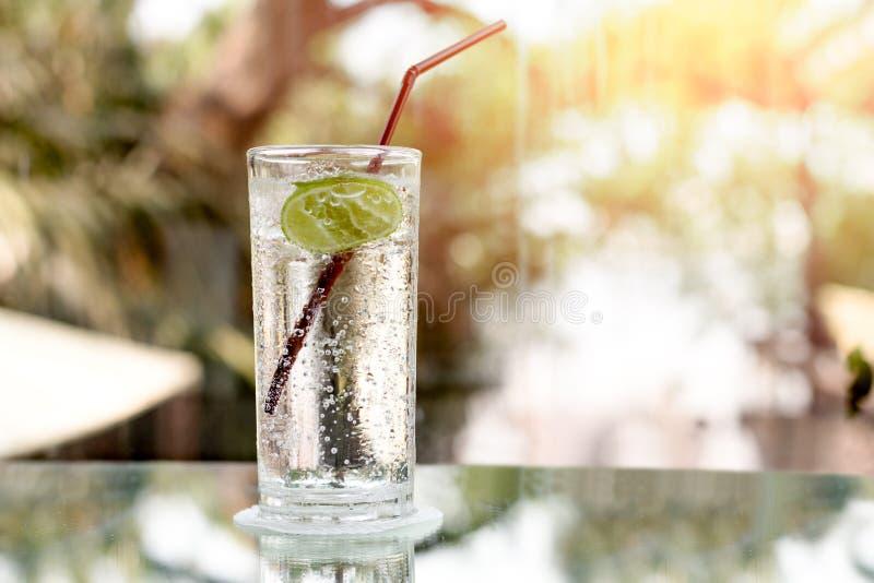 Exponeringsglas av ny mousserande mineralvatten och en limefrukt royaltyfri fotografi