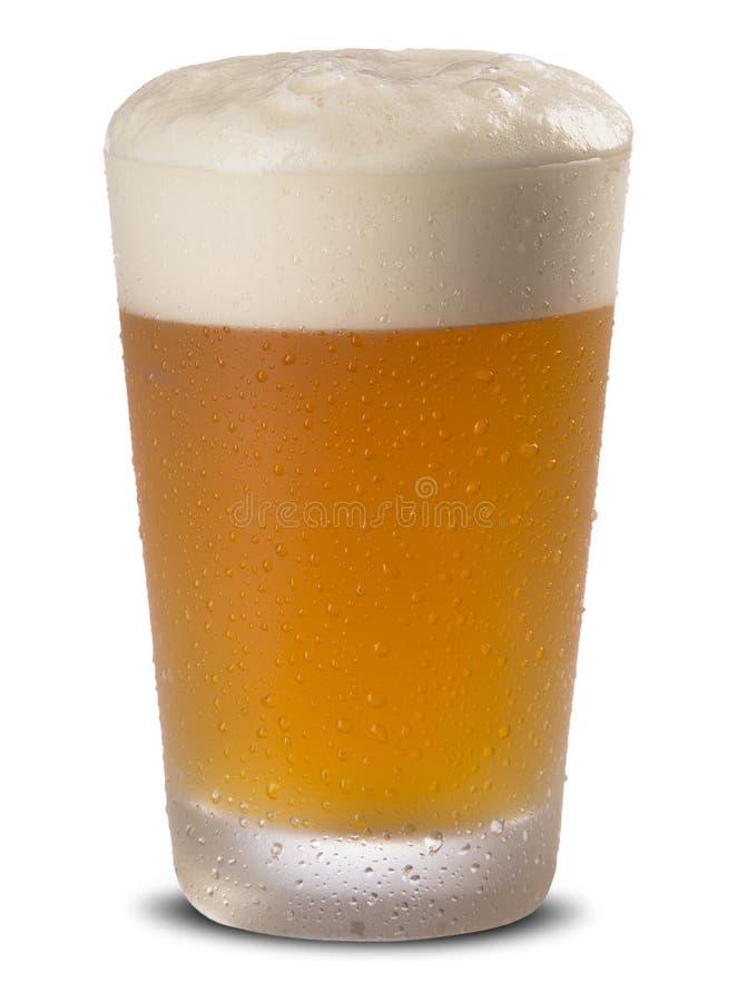 Exponeringsglas av nytt öl med locket av skum på vit backgroun arkivfoton