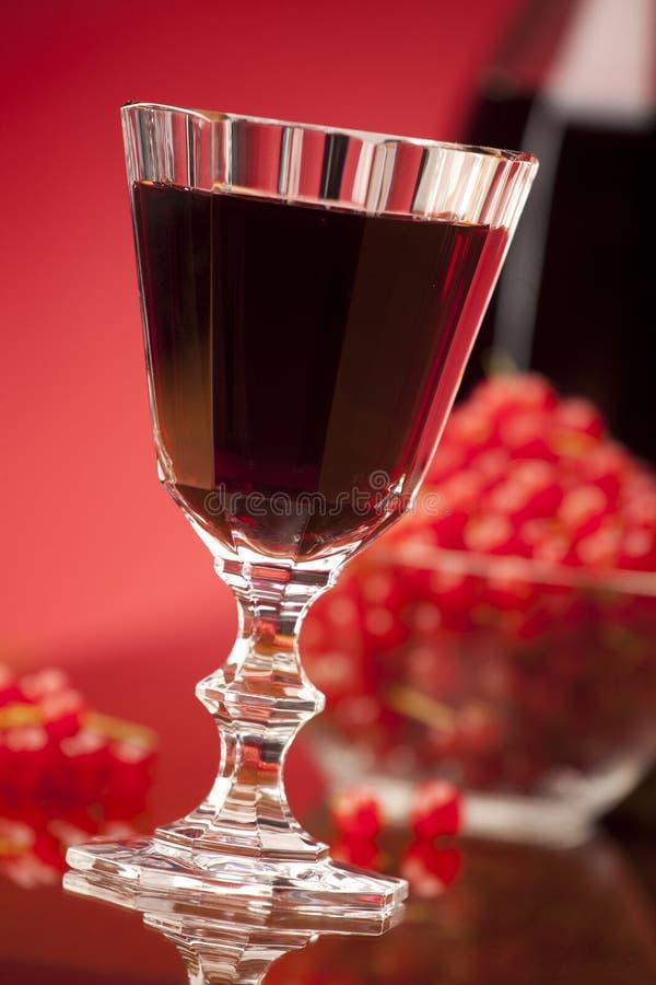 Exponeringsglas av röd fruktwine royaltyfria bilder