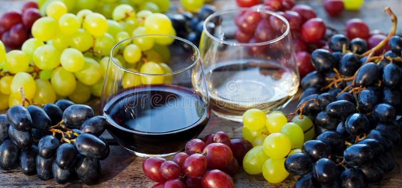 Exponeringsglas av r?tt och vitt vin med det nya druvasortimentet p? tr?tabellen close upp royaltyfri bild