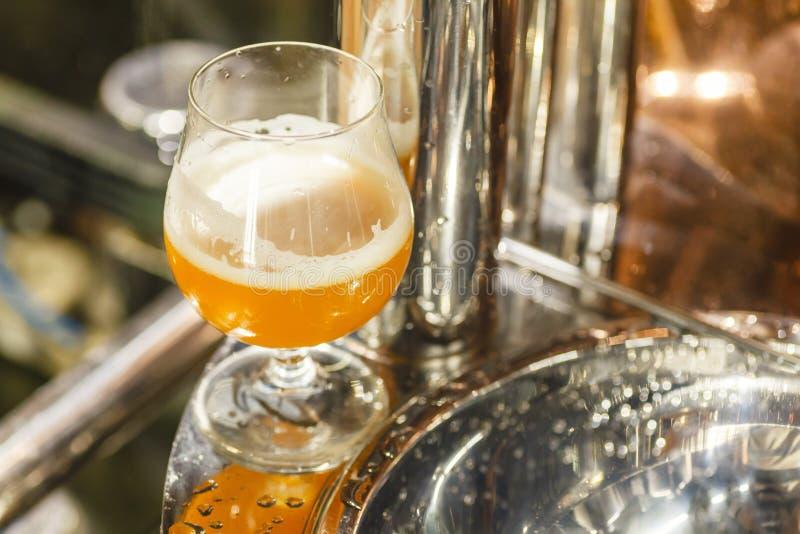 Exponeringsglas av veteöl på ett bryggeri royaltyfri bild