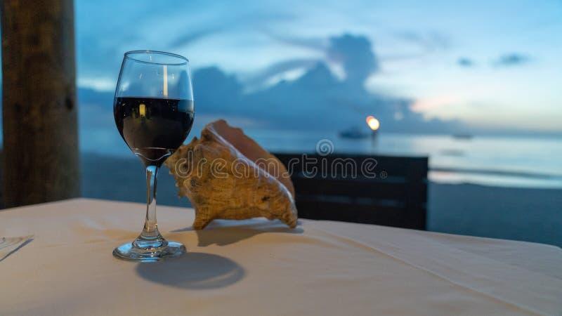 Exponeringsglas av vin medan över att se havet arkivfoto
