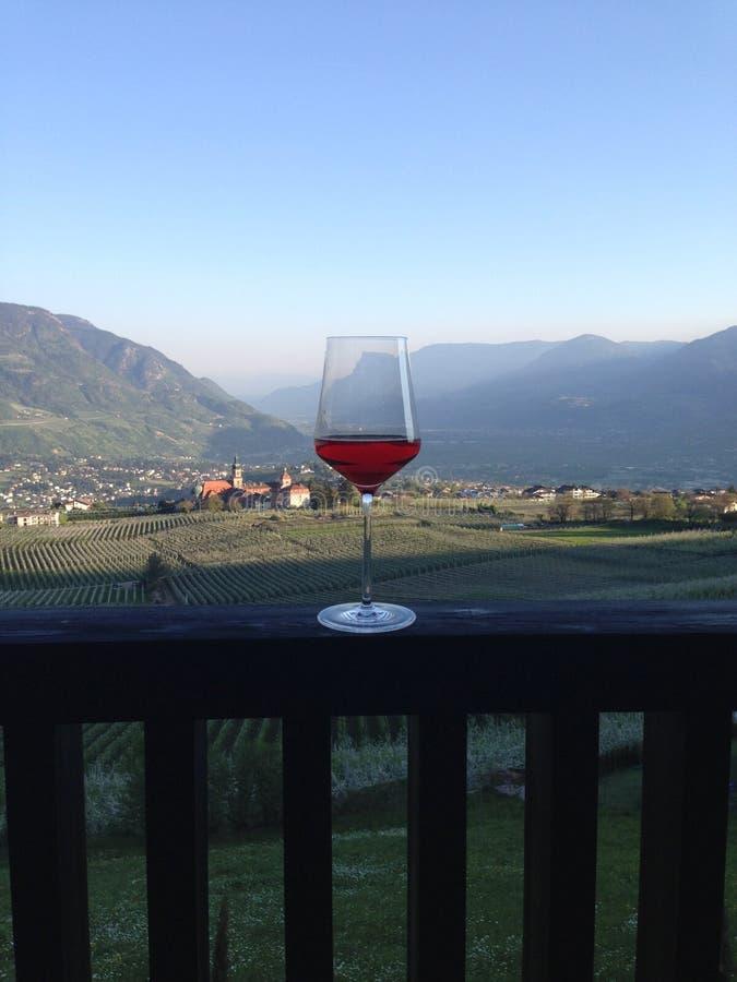 Exponeringsglas av vin som är fullt av mäns passion och arbete royaltyfri bild