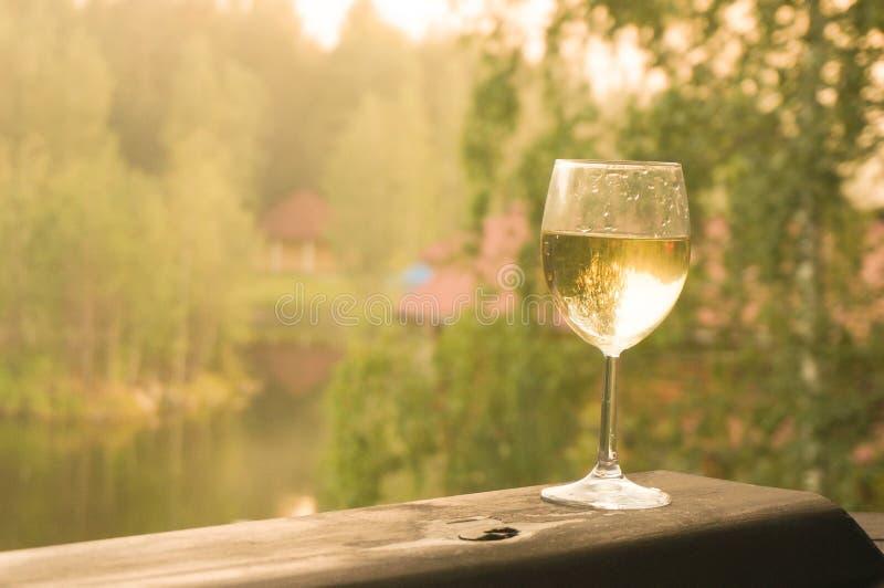 Exponeringsglas av vitt vin p? en gr?n bakgrund av skogen arkivfoton
