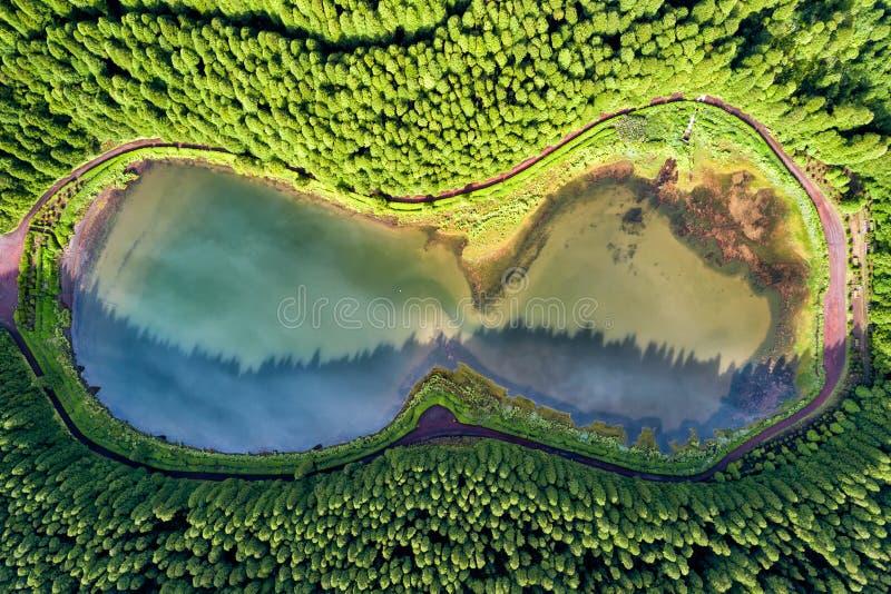 Exponeringsglas formade surrlandskap Överkant ner flyg- sikt av ett litet damm i mitt av en skog, reflekterande moln i himlen _ arkivfoton