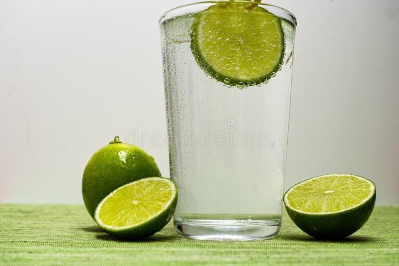 Exponeringsglas med kall mousserande mineralvatten, limefrukt och citronen royaltyfri fotografi