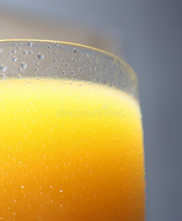 Exponeringsglas med orange fruktsaft royaltyfri foto