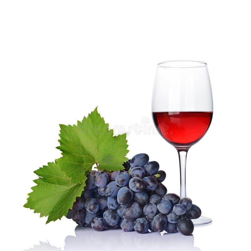Exponeringsglas med rött vin för att smaka med den nya druvan och det gröna bladet arkivfoton