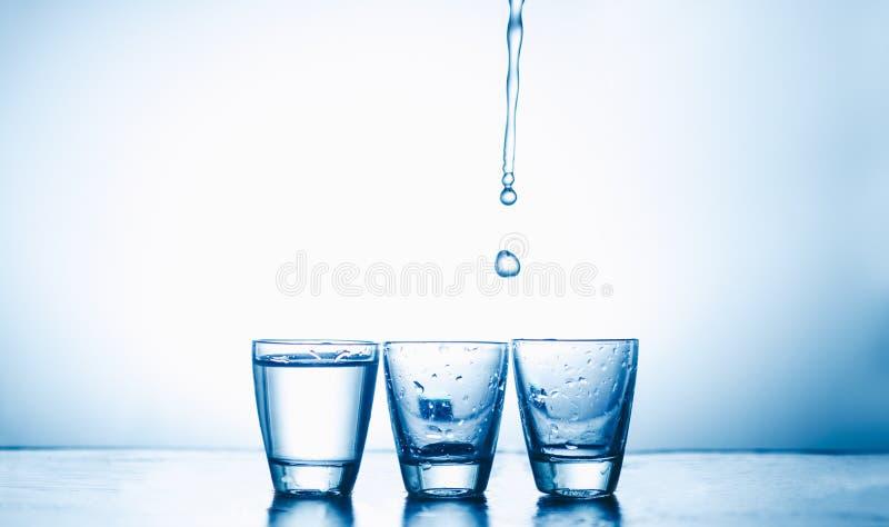 Exponeringsglas med vodka royaltyfri bild