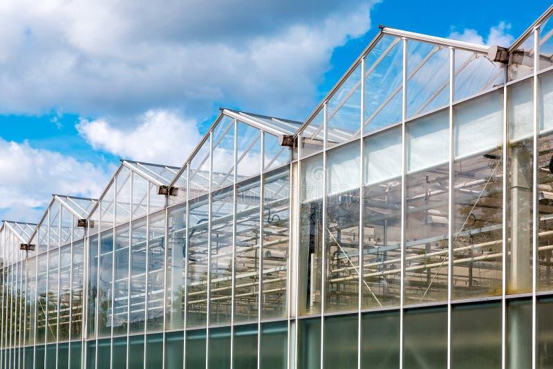 Exponeringsglasväxthusfasad mot en blå himmel royaltyfri foto