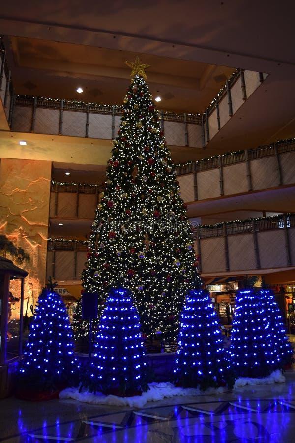 Exposição da luz da árvore de Natal na entrada do hotel fotos de stock royalty free