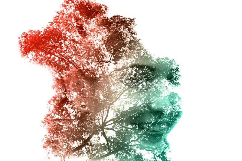 Exposição dobro de uma menina bonita nova através dos ramos e das folhas Retrato de uma mulher, olhar misterioso, olhos tristes,  ilustração stock
