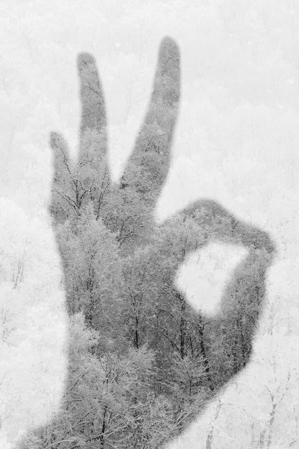 Exposição dobro do gesto APROVADO e da floresta nevado fotos de stock