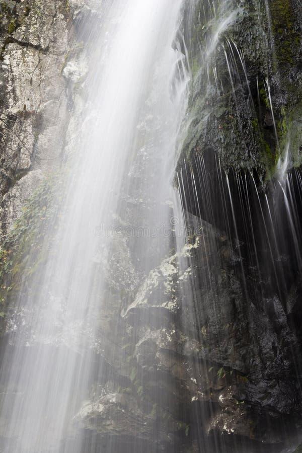 Exposição longa da água de Autumn Boyana Waterfall, montanha de Vitosha, Sofia Bulgaria foto de stock